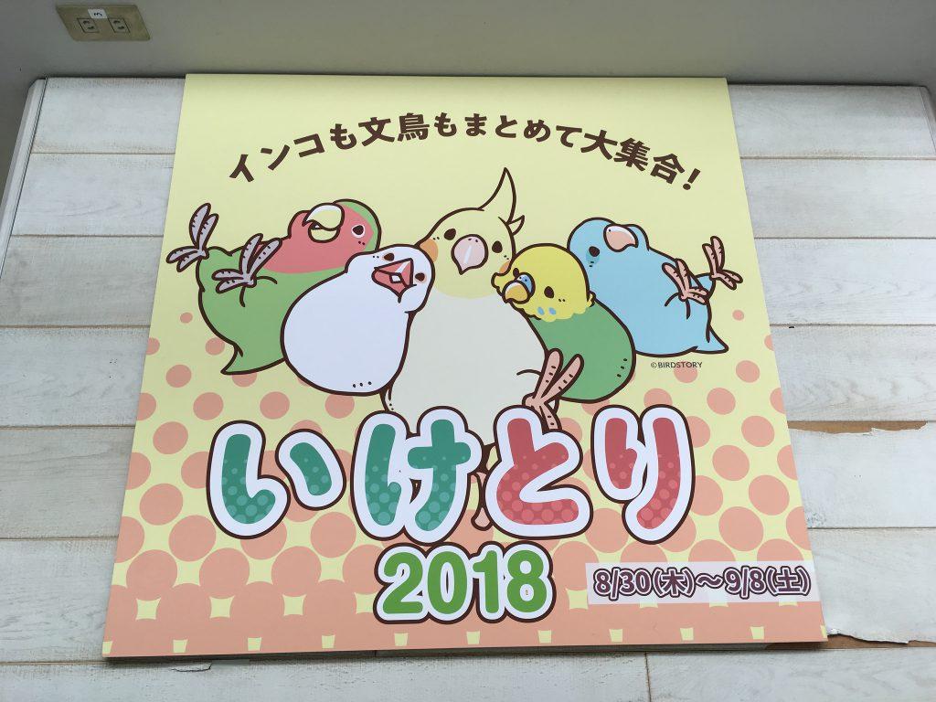 いけとり(2018-09-05)
