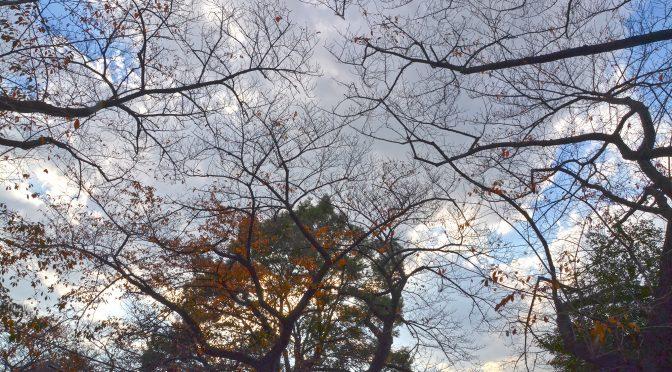 十一月の空